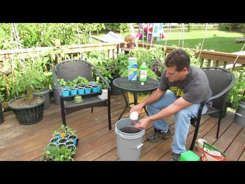 How To Use & What Is Water Soluble Garden Fertilizer: My Organic Mix - TRG 2014