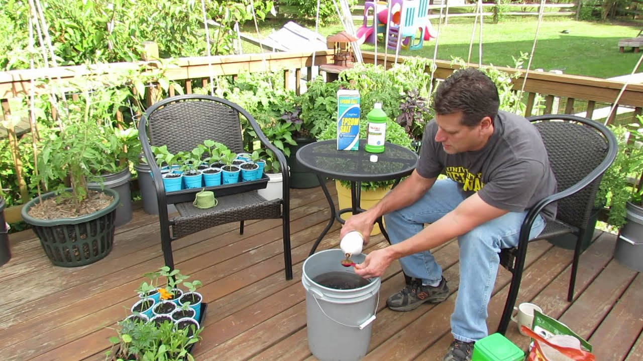 How To Use U0026 What Is Water Soluble Garden Fertilizer: My Organic Mix   TRG  2014   YouTube