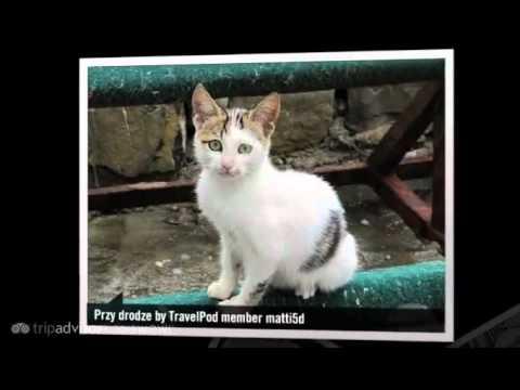 """Czarnogora... czy Czarnadziura :)"" Matti5d's photos around Kotor, Serbia and Montenegro"