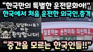 """""""한국만의 특별한 초보운전 문화야!""""…"""