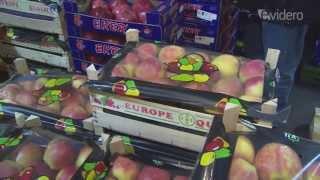 Der Apfel-Transport-Wahnsinn