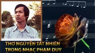 Thơ Nguyễn Tất Nhiên Qua Nhạc Phạm Duy