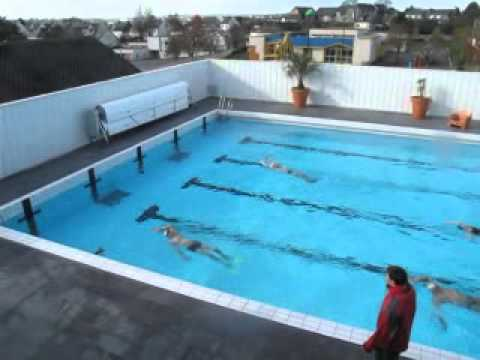 Piscine aqua forme club de gym a ergue gaberic en bretagne for Piscine algerie