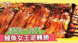 活出一片天 鰻魚女王《進擊的台灣》第226集