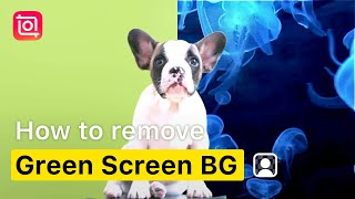How to Remove Green Screen Background with Chroma(InShot Tutorial)