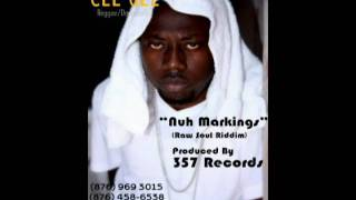 Cee Gee - Nuh Markings - Raw Soul Riddim - (357 Records)