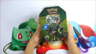 Pokemon TCG Opening The Battle Ready Power Of Zygarde EX Tin