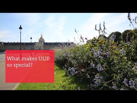 What Makes ULIP