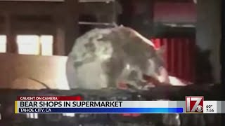 VIDEO: Bear caught prowling around Safeway grocery store