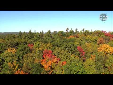 Tapestry of Colour - Short Video of Massachusetts from Above (HD)