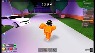 I MET AESTHETICAL?!! | Roblox Mad City