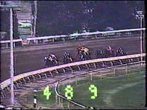 Braddock Bay Meadows Race Track Octavio Ramirez up 12-01- 1983