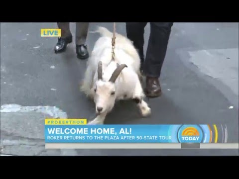 AL ROKER Performs Illuminati Goat Ritual On Live TV