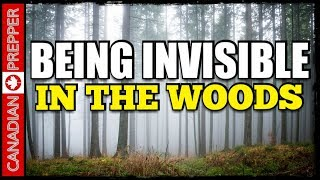 Camoflauge and the Wilderness GRAY MAN Camp: Invisible in the Woods