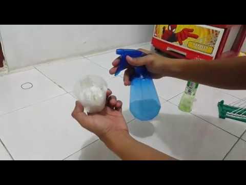 Cara ALAMI dan AMAN Mengusir Tikus di Rumah.
