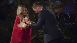 Colton Underwood and the women on The Bachelor