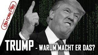 Donald Trump - warum tut der Mann das?