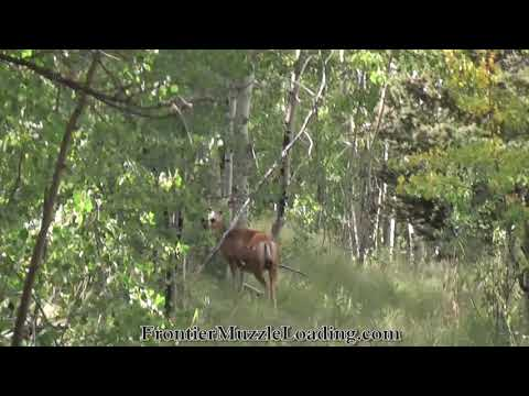 Colorado Mule Deer - Traditional Muzzleloader Hunt