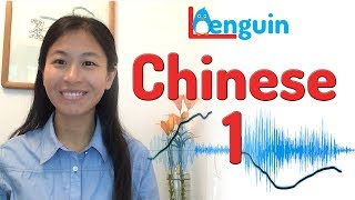 Learn Chinese - Basic Expressions + Visualize Tones (1000 Chinese Sentences)