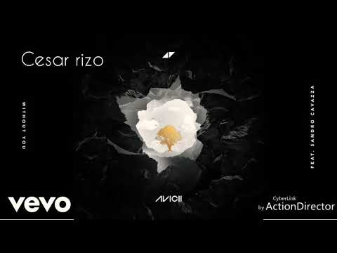 Avincii-without you ft.sandro cavazza Mp3