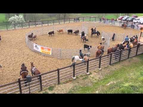 SDWA 2014 - Thélys Ranch sorting 1er Jour