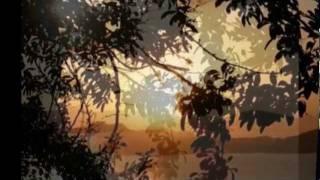 Bóng mây đời tôi - Hồng Nhung