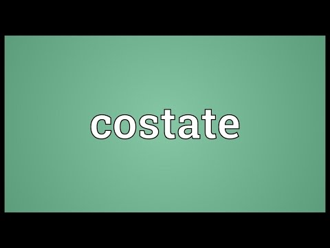 Header of costate