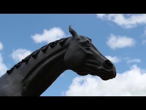 British Horse Racing Authority