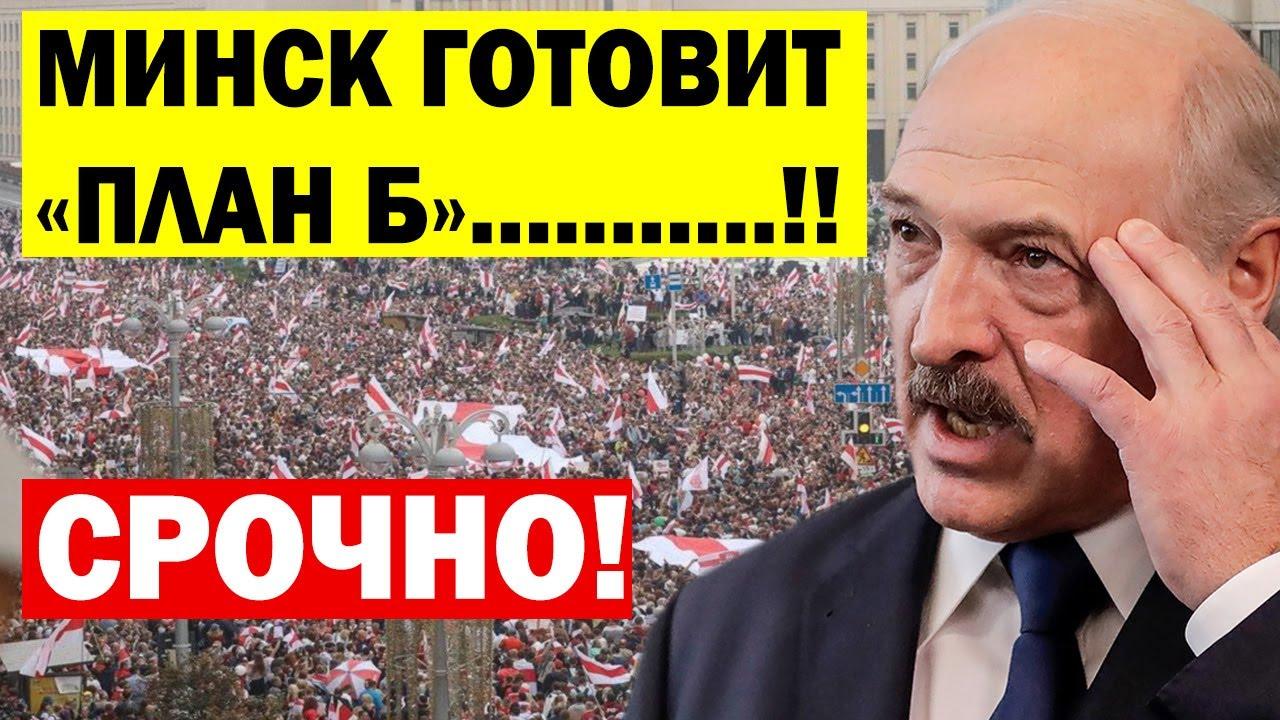 Срочно! Белорусы готовят