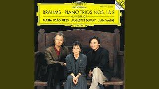 Brahms: Piano Trio No.1 In B, Op.8 - 1. Allegro con brio