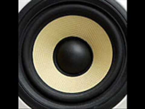 A. Human pacey singer (ocelot remix)
