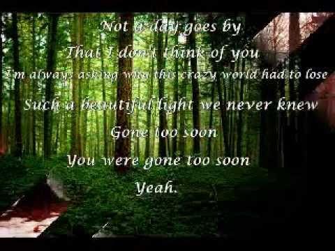 Daughtry - Gone too soon lyrics