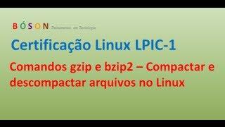 Comandos gzip e bzip2 - Comprimir e descomprimir arquivos no Linux