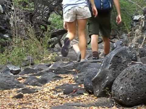 Ala Kahakai National Historic Trail in 60 Seconds