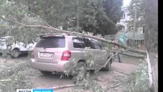 На Липовой горе в Ярославле на машину упало дерево(, 2015-07-02T20:15:25.000Z)