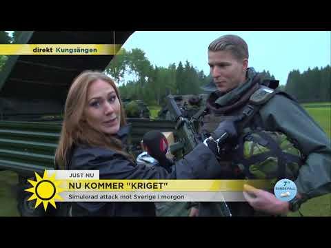 """Krigsövningen Aurora: """"Stridsvagnar och attackhelikoptrar - det får vi aldrig träna på annars &"""