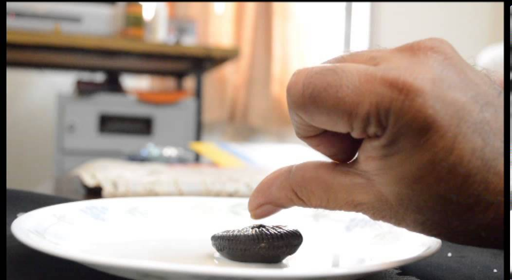 SHALIGRAM HOW TO TEST REAL OR FAKE