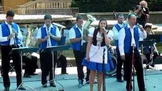 Věnovanka 2 - Festival Hraj kapelo, hraj