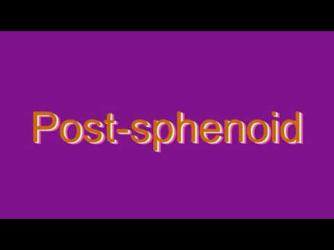 how to pronounce post-sphenoid - youtube, Human Body