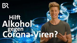 Hilft Alkohol gegen Corona-Viren? | Coronavirus | BR