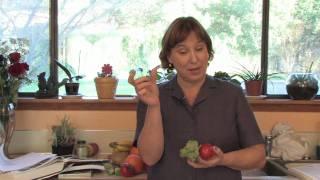 Gardening: Edible Plants : How To Grow A Small Vegetable Garden