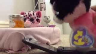 Beanie Boo: High School Tremors ~ Part 1 ~ A Loser