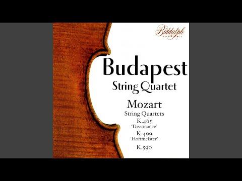 String Quartet No. 19 In C, K.465, 'Dissonance': II. Andante Cantabile