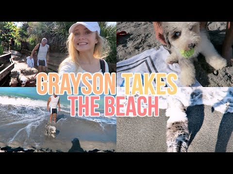 Grayson Takes the Puppy Beach!