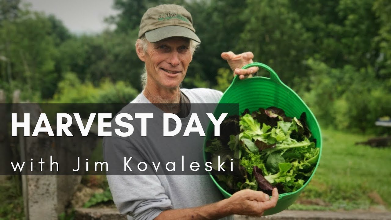 From Farm To Table Harvest Day Eat Local Jim Kovaleski Youtube
