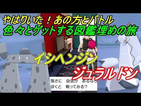 ポケモン剣盾 イシヘンジン 育成論