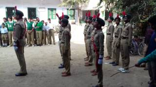 Video 48 bengal bn bkp ncc prade in netaji shikshayatan agarpara. .. download MP3, 3GP, MP4, WEBM, AVI, FLV November 2017