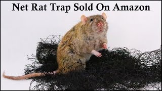 Does This Net Rat Trap Sold On Amazon Work?     Mousetrap Monday