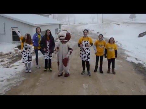 Mount Horeb Moo Cow Brain Break