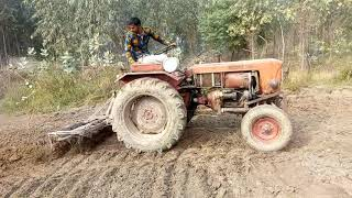 Antique T 25 tractor performance with cultivator